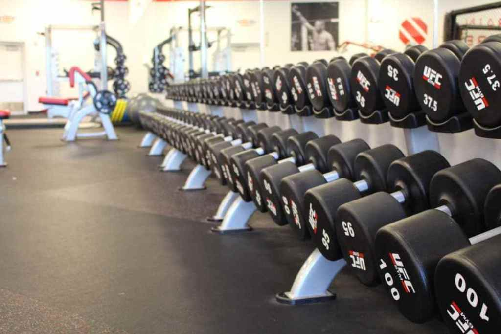 Dumbbells on a weight rack in a gym.